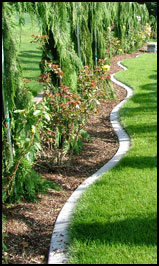 Beautiful smooth concrete curbing installed along a gogeous landscape bed.